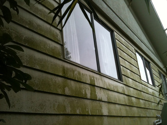 professional cladding cleaning makes light work of dirty cladding