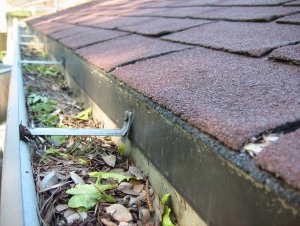 Free gutter cleaning survey